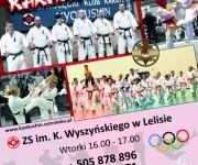 Karate - Lelis